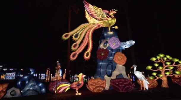 Large illuminated lanterns of birds at North Carolina Chinese Lantern Festival