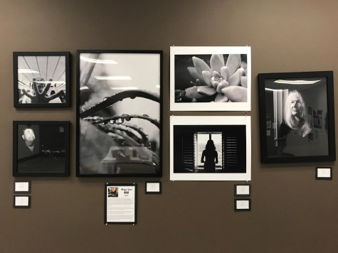 IB visual arts exhibition shows student excellence