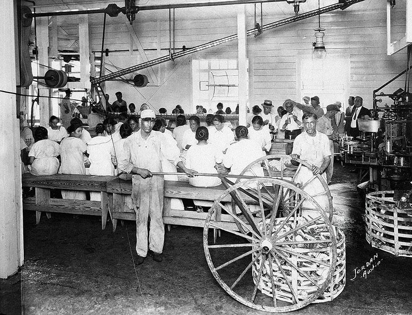 austex chili factory austin tribeza story