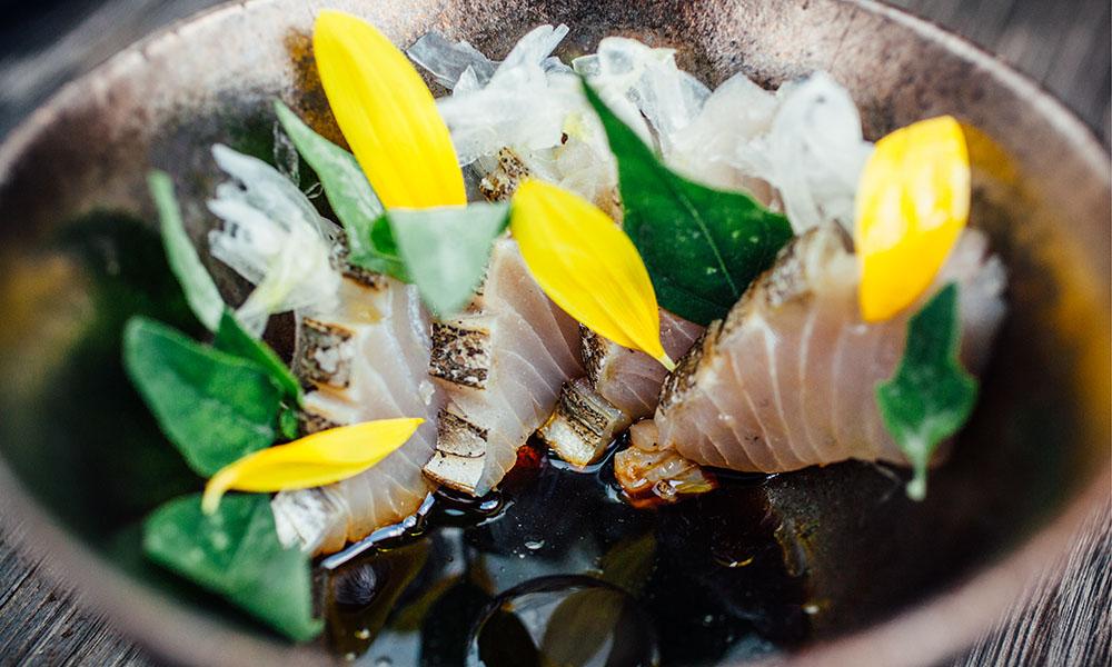 otoko austin sushi yoshi tribeza