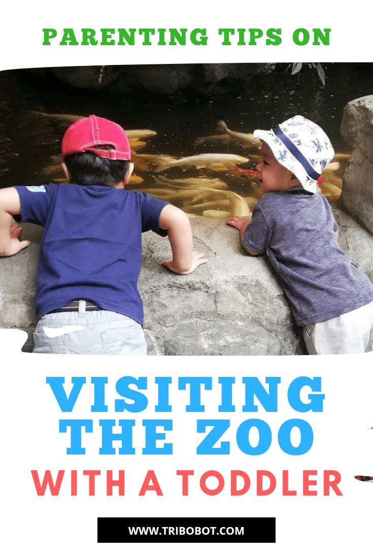Exploring Avilon Zoo Rizal with a Toddler3