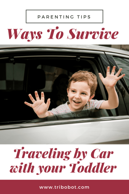 Ways To Survive Traveling by Car with your Toddler