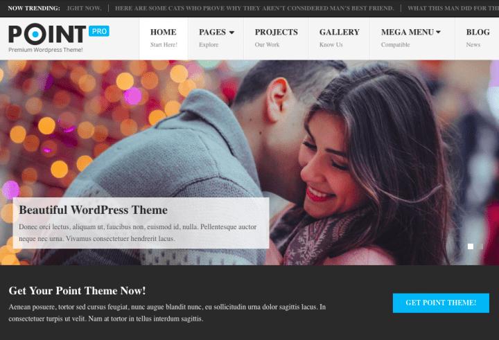 Best WordPress Blogging Theme