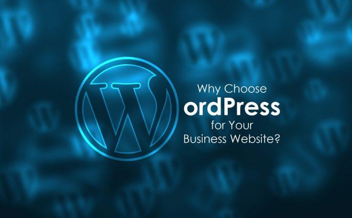 wordpress platform for websites