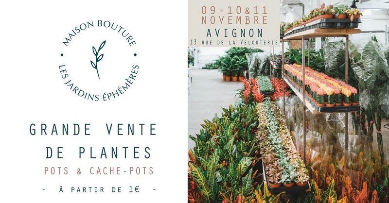 grande vente de plantes à Avignon
