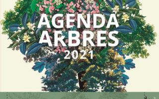 agenda des arbres 2021
