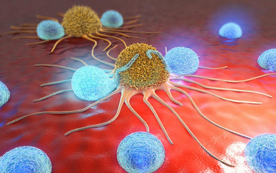 Револуционерно достигнување на швајцарските научници: клетките на агресивен рак на дојка ги претвориле во сало