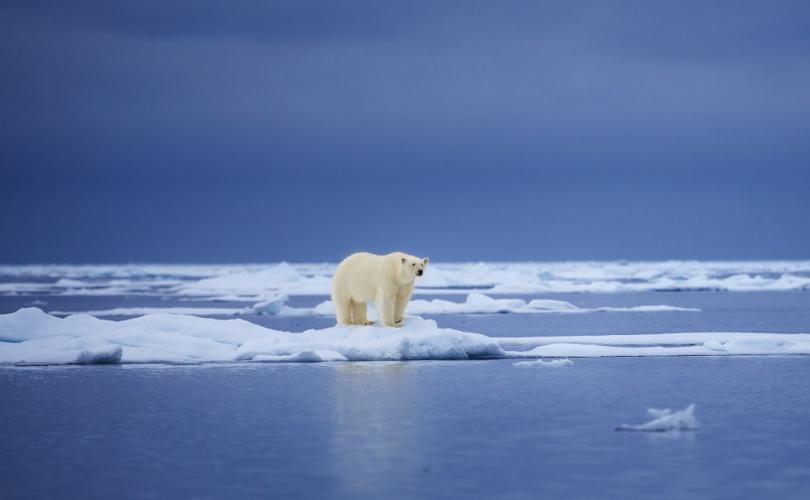 Încălzirea globală, ultima scamatorie de eliminare a libertății individuale
