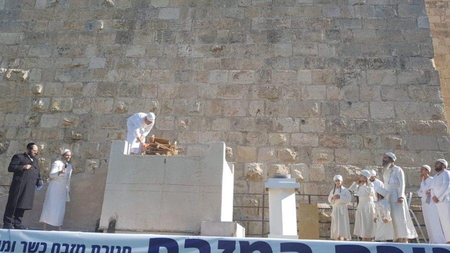 Mulțumită lui Trump, Mielul Pascal ar putea fi sacrificat pe Muntele Templului pentru prima dată în 2000 de ani