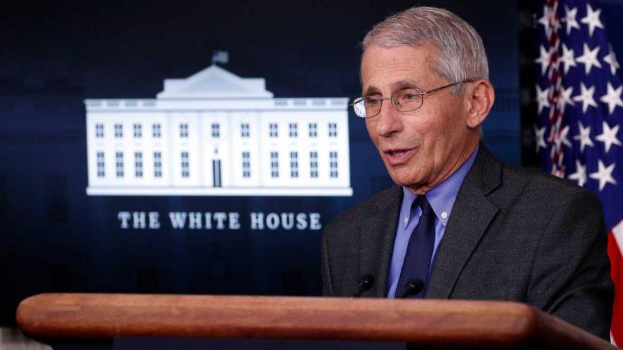 Alegeri 2020: Pe fondul pandemiei, Dr. Fauci aprobă votarea în persoană