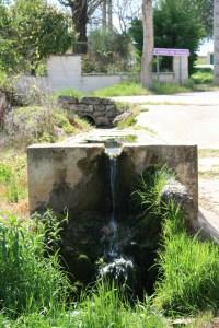 Image (1) Tesi-Colonia-Clunia-Sulpicia.jpg for post 9215
