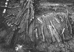 Image (1) pesca-en-la-prehistoria.jpg for post 17466