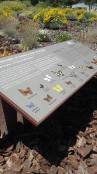 Plafó explicatiu de la reserva de papallones de Sant Joan Nord, Sant Cugat del Vallès. Fotografia: Araceli Martín