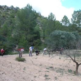 3. Prospecció d'una de les àrees d'expectativa arqueològica a Flix (Ribera d'Ebre) (Font: SAPPO-UAB)