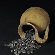 """Imatge del XVI congrés nacional de numismàtica """"Tresors i Troballes Monetàries: Protecció, Estudi i Museïtzació"""""""