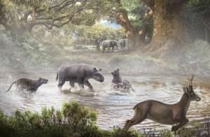 Figura 1. Reconstrucció del paisatge i la fauna del Miocè inferior (16,5-16 Ma) basada en les restes trobades als jaciments de Gelida. Al centre de la il·lustració dos gossos-ós del gènere Ampichyon ataquen al rinoceront Dromoceratherium mirallesi. Dibuix: Óscar Sanisidro.