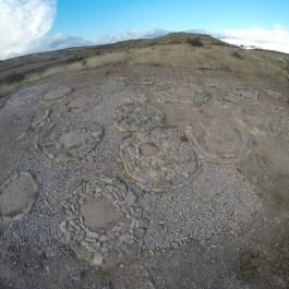 2. Vista general del sector 1. Fotografia: Iltirta Arqueologia