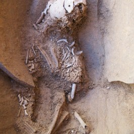 5. Enterrament votiu fundacional d'un gos. Fotografia: J. Ciurana