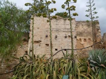 9. Molins del Comte (Tortosa). Foto: Helena Kirchner