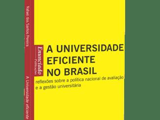 Ilustra a capa do livro A Universidade Eficiente no Brasil.
