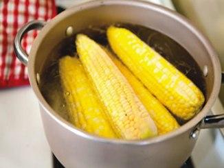 Corn-boil-maize
