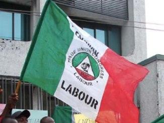 nlc-flag_340