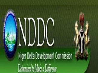 nddc1