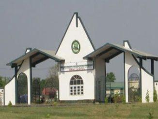 ibb-university1