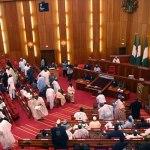 Ekeh, Zinox boss, laud Senate as it embraces electronic voting