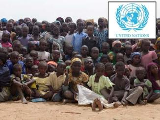 cameroon boko haram refugees