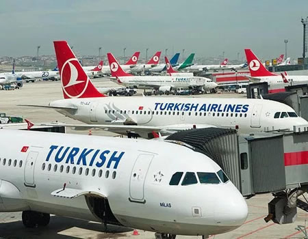 Airlines, Turkish airline business, picket Turkish Airlines facilities