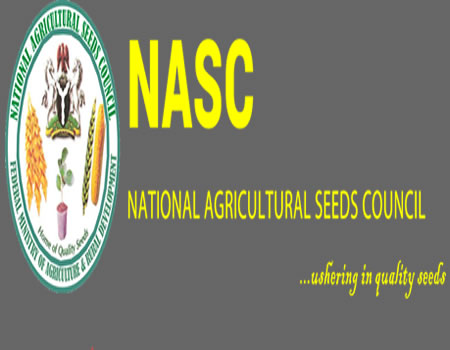 We're Getting Purer Seeds Due To Basics Innovations – Seed Council