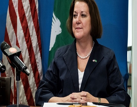 US interested in PIB bill, VISA, US ambassador, Nigeria