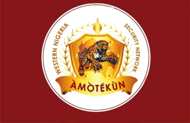 Amotekun and the call for state police