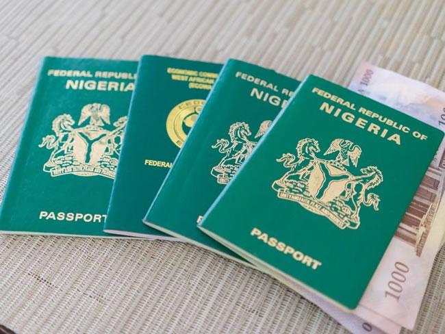 Nigerians in Italy slam critics, passport