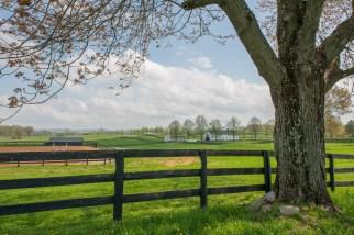 Skyland Farm