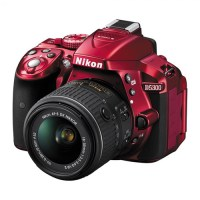 Capture Holiday Moments With A New Camera From Best Buy ! #HintingSeason #CamerasAtBestBuy