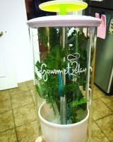 Cook It Fresh With Gourmet2Day Herb Keeper !