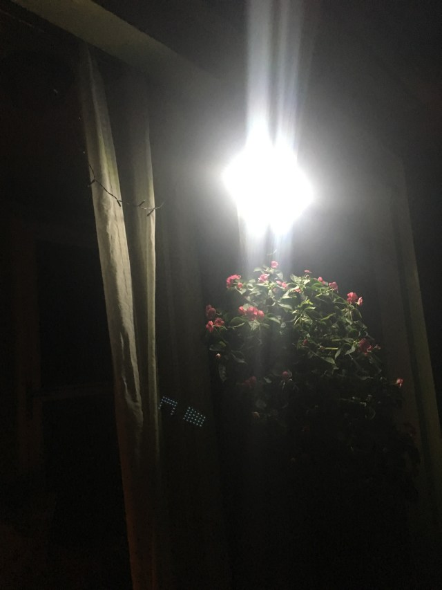 Solar light shot