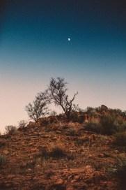 desertprev-4