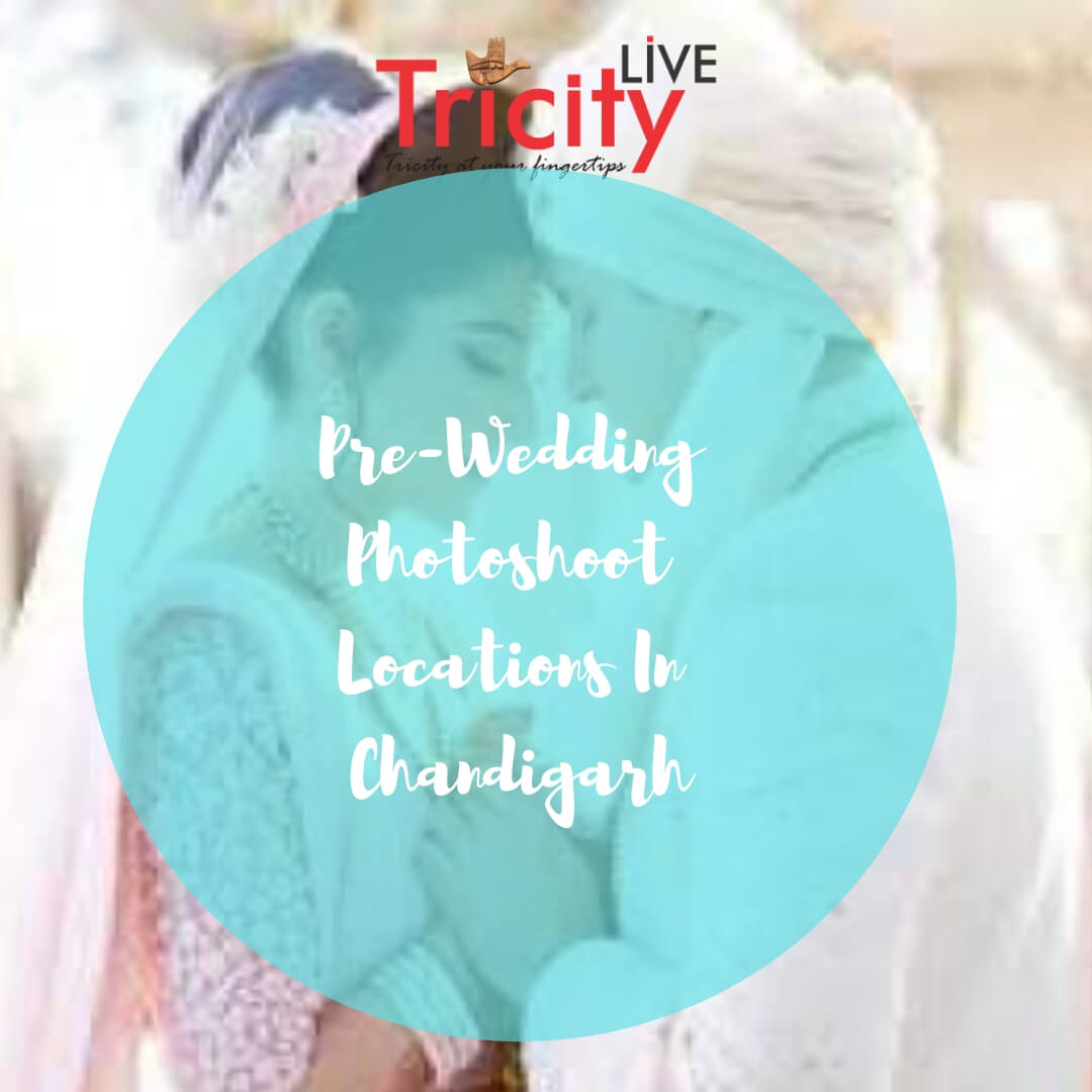 The Best Pre-Wedding Photoshoot Locations In Chandigarh