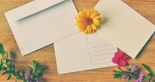 How to Write the Perfect Postcard