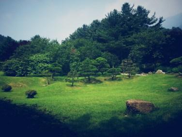 The Garden of Morning Calm 아침고요수목원