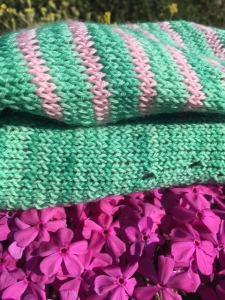 Danio Delphine tricot