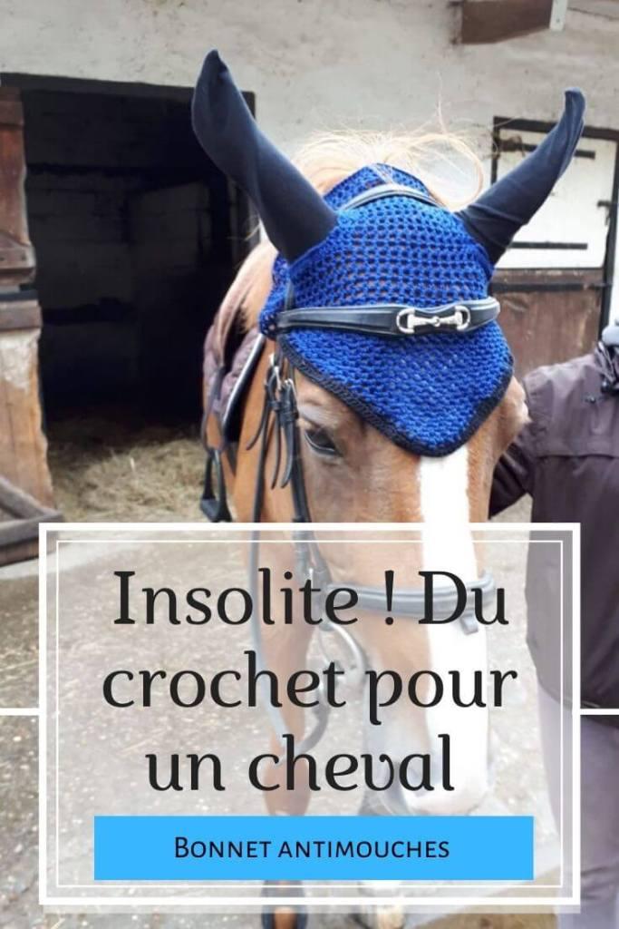 Insolite ! Du crochet pour un cheval - bonnet antimouches