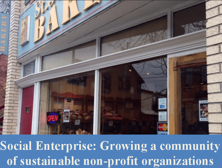 Social Enterprise: Growing a community of sustainable non-profit organizations