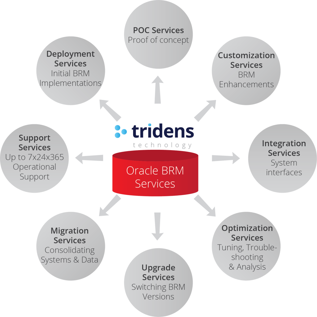 Oracle BRM Services