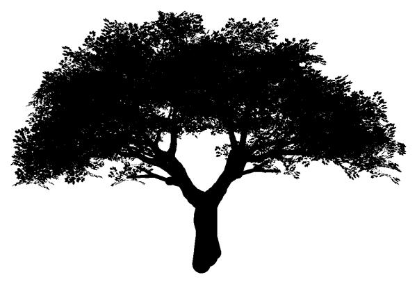 трафарет дерева (42)