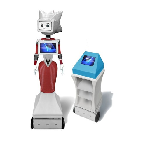 Social Robot and autonomous robot MARRtino for support and prevention covid 19