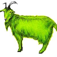 Cabras verdes y demás yerbas